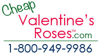 Cheap Valentine Roses