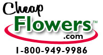 Cheap Flowers