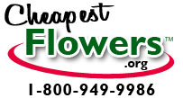 Cheapest Flowers