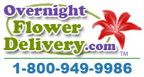 Overnight Flower Delivery