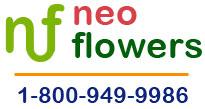 Neo Flowers